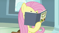 Fluttershy reading Fallen Idol again S9E21