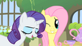 Fluttershy winking at Rarity S1E17.png