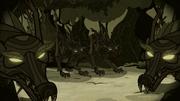 Lobos auyando