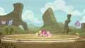 Ponyville buckball teams having a practice game S6E18.png
