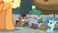 Professor Fossil laughing at Applejack's claim S7E25