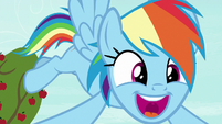 "Rainbow Dash ""in the history of Equestria!"" S8E5"
