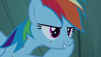 "Rainbow Dash ""spoiler alert"" S7E16"