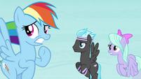 Rainbow Dash and Pegasi worried S4E16