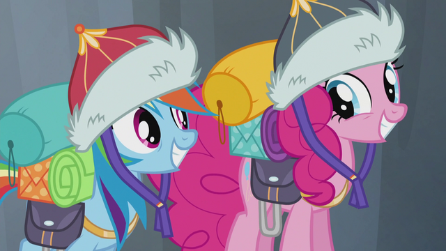 File:Rainbow and Pinkie smiling S5E8.png
