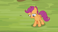 Scootaloo feeling very uncertain S8E20