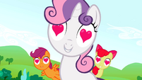 The Cutie Mark Crusaders charmed S02E03