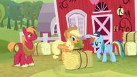 AJ and Big Mac give hay bale to Rainbow S9E15