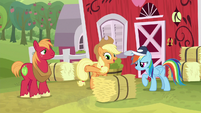 AJ and Big Mac give hay bale to Rainbow S9E15