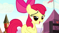 "Apple Bloom ""no risk, no reward"" S5E6.png"
