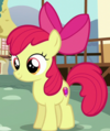 Apple Bloom ID