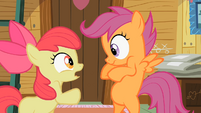 Apple Bloom freaking out! S2E12