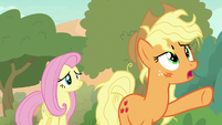 Applejack -we gotta get up that peak!- S8E23