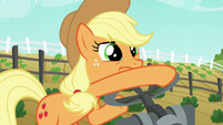 Applejack turns the master valve again S6E10