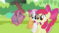 CMC surprised S2E03.png