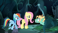 Mad Zephyr greets Fluttershy and Rainbow S6E11.png