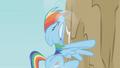 Rainbow Dash crashes into a mountain S01E05.png