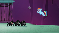 Rainbow Dash giving Cerberus a rock S8E26