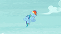 Rainbow continues dancing S5E15.png