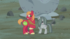 S05E20 Marble Pie i Big Mac