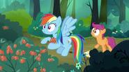 S07E16 Scootaloo ostrzega Rainbow przed trującymi jagodami