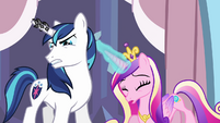 Shining Armor 'I have to find' S3E2