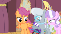 Silver Spoon points at Scootaloo's wings S4E05