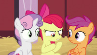 Apple Bloom -mysterious package- S8E10