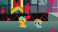 Baby Snips and Snails S3E5
