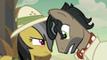 Dr. Caballeron gets in Daring Do's face S7E18.png