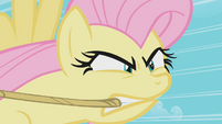 Fluttershy anger building up S2E2