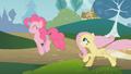 Fluttershy runs after Pinkie S01E07.png