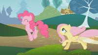 Fluttershy runs after Pinkie S01E07