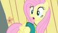 Fluttershy scared all over again S4E14.png