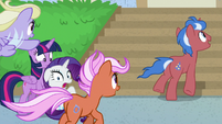 Ponies racing past Twilight and Rarity S8E16