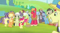 Ponies smiling at Applejack S4E20
