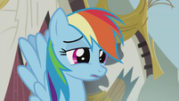 Rainbow -that was... really sappy- S5E8