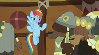 Rainbow Dash apologizes to yaks S8E18