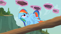 Rainbow Dash kidding me S2E8