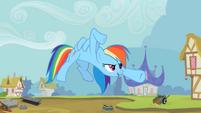 Rainbow Dash kung fu pose S2E8