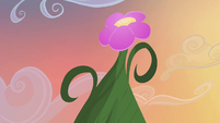 Tall flower S4E11