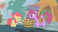 Apple Bloom e Berryshine se olham T1E12