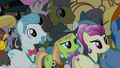 Assorted delegates listen to Princess Celestia S5E10.png