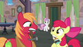Big McIntosh and Apple Bloom hear Sweetie Belle's warning S7E8.png