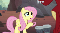 "Fluttershy ""is that why you pick on Spike?"" S9E9"