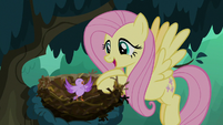 "Fluttershy ""right where you belong"" S8E13"