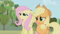 Fluttershy and Applejack from the bad cupcakes S1E4.png