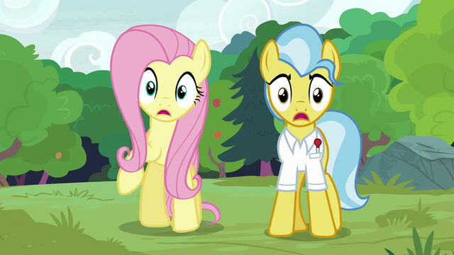 File:Fluttershy and Dr. Fauna gasp in shock S7E5.png