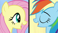 """Fluttershy and Rainbow """"we've got quirks"""" S7E14.png"""