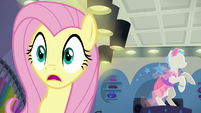 Fluttershy looking very impressed S8E4